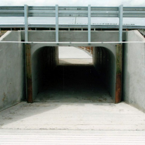 Cattle Underpass